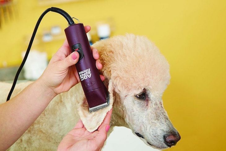 Andis 22360 AGC Super 2 Speed Professional animal Clipper Review